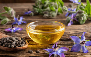 Borage oil benefits and side effects